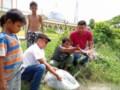 Peduli Biota Sungai, Jurnalis Tabur Bibit Tilapia di Aliran Sungai Bedagai