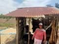 Diserang Hama Lalat Buah, Petani Jeruk Pakpak Bharat Beralih Ke Tanaman Muda