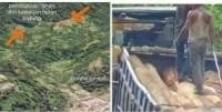 Pasca Banjir dan Longsor di Parapat, 50 Truk Kayu Ilegal Logging Dikabarkan Gagal Masuk ke Pematangsiantar