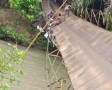 Jembatan Gantung Ambruk, 6 Warga Luka, 2 Septor Terjun ke Sungai